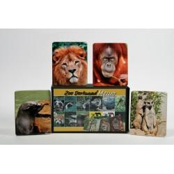Memo Zoo Dortmund
